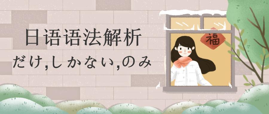 日语语法解析-だけ,しかない,のみ